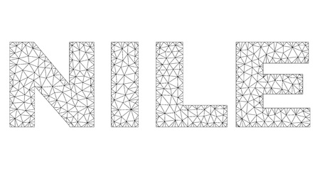 Mesh vector NILE text. Abstract lines and points are organized into NILE black carcass symbols. Wire carcass flat polygonal mesh 向量圖像