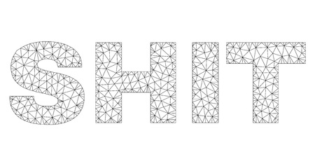 Mesh vector SHIT text. Abstract lines and spheric points are organized into SHIT black carcass symbols. Wire carcass flat polygonal mesh in vector format.