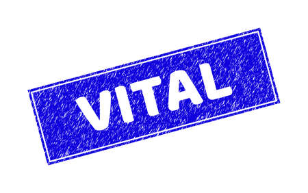 Grunge VITAL rectangle stamp seal. VITAL subtraction caption is located inside rectangle with border. Rectangular seal with grunge texture in blue color.