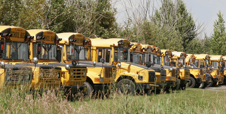 Parked schoolbuses Stock Photo - 1646509