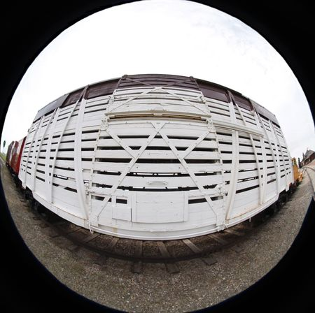 goods train: White railway car   Fish eye