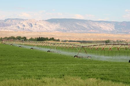 pivotal: Irragation, Irrigation sprinklers watering a farm field