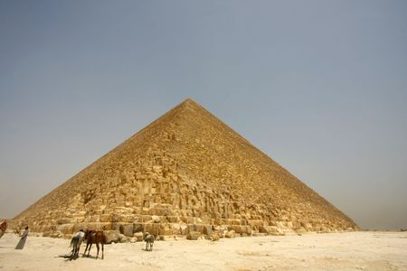 The great Pyramid  with local camel guide photo