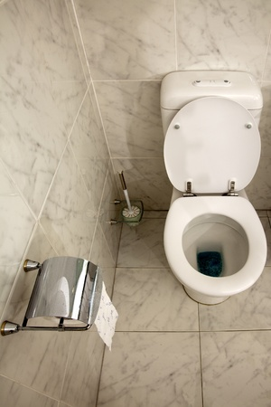 Interior of the washroom - Toilet in the bathroom Stock Photo - 8385160