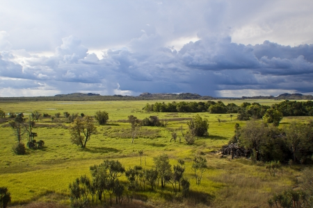 kakadu: Kakadu National Park, Australia - wet season -   Stock Photo