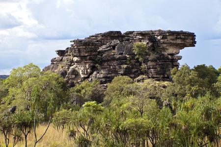 kakadu: Kakadu National Park, Australia at wet season