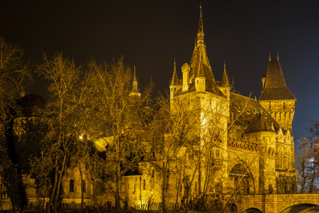 mystic place: Vajdahunyad Castle in the City Park of Budapest by the night lights- Budapest city famous historical castle and nearby lake.