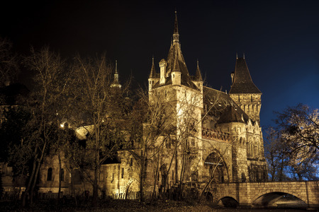 Vajdahunyad Castle in the City Park of Budapest by the night lights- Budapest city famous historical castle and nearby lake.