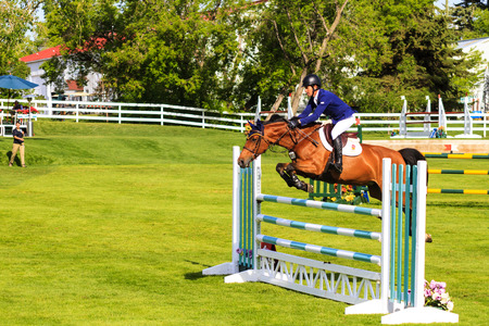 prestige: CALGARY CANADA - JUN 7 2015 :  Spruce Meadows International hors jumping competition, � Stock Photo #77782566 CALGARY CANADA - JUN 7 2015 Unidentified rider in action during the prestige s Spruce Meadows International hors jumping competition, ride