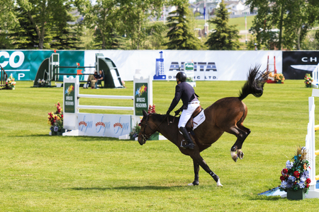 prestige: CALGARY CANADA JUN 13 2015: Unidentified rider in action during the prestige s Spruce Meadows International hors jumping competition, riders comes all over the world to compete. Editorial