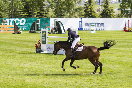 CALGARY CANADA JUN 13 2015: Unidentified rider in action during the prestige s Spruce Meadows International hors jumping competition, riders comes all over the world to compete. Editöryel