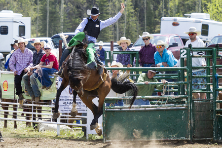 a rural community: WATER VALLEY, CANADA-JUN 6 2015:Unidentified Cowboy participating in the at the Bareback Bronco Water Valley Rodeo. This annual event is important for the rural as well as the sport loving community. Editorial