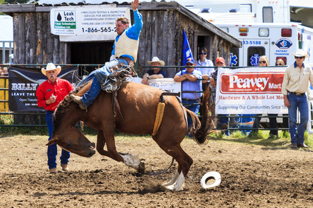 annual event: WATER VALLEY, CANADA-JUN 6 2015:Unidentified Cowboy participating in the at the Bareback Bronco Water Valley Rodeo. This annual event is important for the rural as well as the sport loving community. Editorial