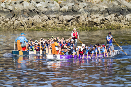 paddles: VICTORIA CANADA - AUG 14 2016: The annual  Victoria Dragon Boat Festival. Victoria's most spectacular summer festivals and the only dragon boat festival in Canada to take place in a working harbor. Editorial