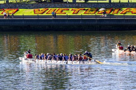 VICTORIA CANADA - AUG 14 2016: The annual  Victoria Dragon Boat Festival. Victoria's most spectacular summer festivals and the only dragon boat festival in Canada to take place in a working harbor. Editorial