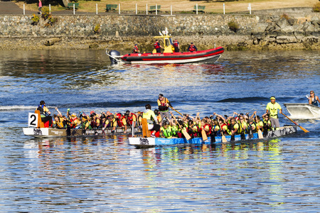 VICTORIA CANADA - AUG 14 2016: The annual Victoria Dragon Boat Festival. Victorias most spectacular summer festivals and the only dragon boat festival in Canada to take place in a working harbour. Editorial