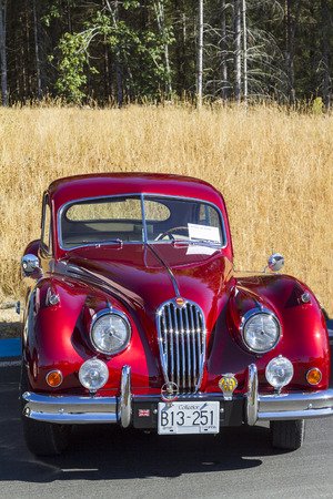 Victoria BC  Canada Aug 27 2017 :  Exotic import motorcars are on display at the Annual Vancouver Island Motor Gathering. These imports are all fully restored for the line up.