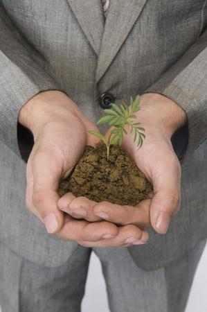 Businessman holding a sapling Stock Photo - 10167792