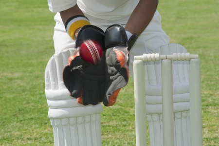 cricket ball: Wicket keeper standing behind stumps and catching a ball LANG_EVOIMAGES