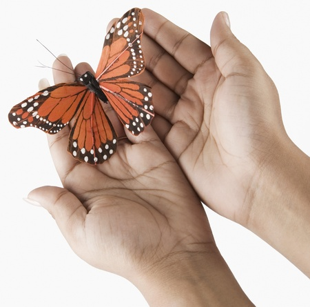 curiousness: Womans hands holding a butterfly
