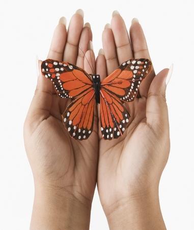 Woman's handen die een vlinder Stockfoto