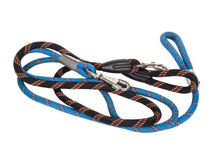 Close-up of dog leashes