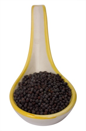 Close-up of black mustard seeds in a spoon Stock Photo - 10236083