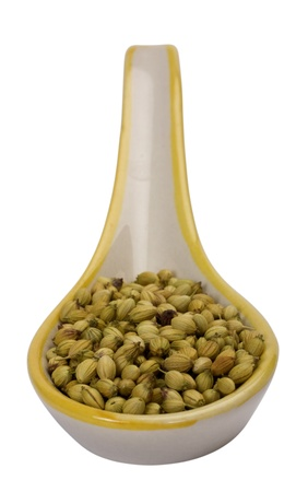 Close-up of a spoon full of coriander seeds photo
