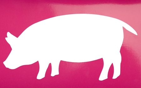 Silhouette of a pig Stock Photo - 10239249