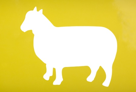 Silhouette of a sheep
