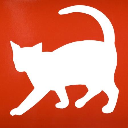 Silhouette of a cat Reklamní fotografie