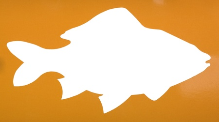 Silhouette of a fish