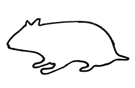 Outline of a rat