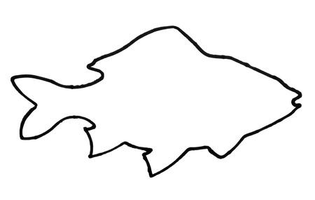 Esquema de un pez Foto de archivo - 10234419