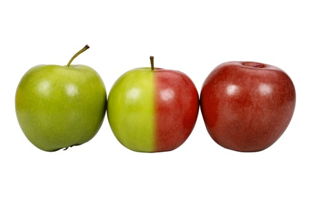 Close-up of apples in a row photo