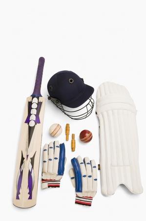 cricket bat: Close-up of cricket equipment