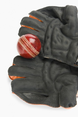 wicket: Close-up of a cricket ball on wicket keeping gloves