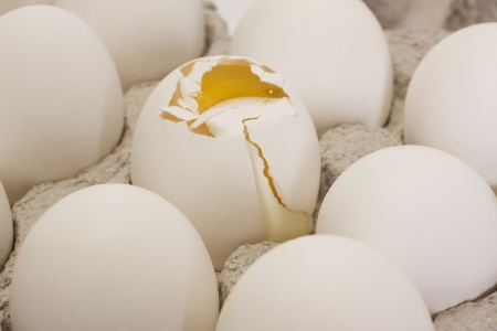 Broken egg in a carton with other eggs photo