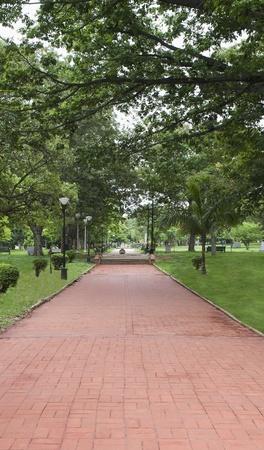 Footpath in a botanical garden, Lal Bagh Botanical Garden, Bangalore, Karnataka, India
