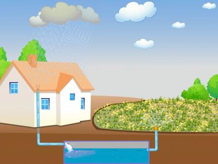 eau de pluie: Illustration montrant la r�colte des eaux de pluie
