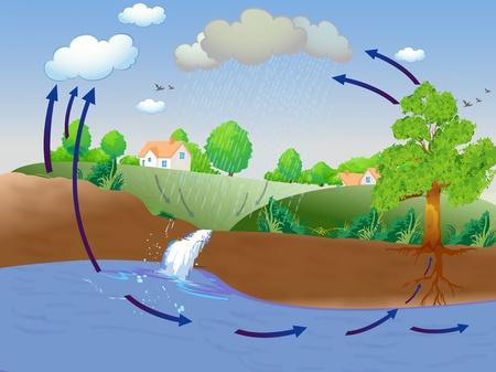 evaporacion: Ciclo del agua ilustración mostrando Foto de archivo