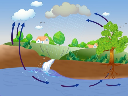 water color painting: Illustration showing water cycle