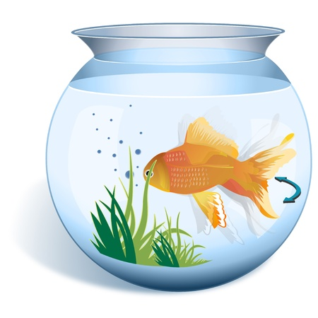 Close-up of a goldfish in a fishbowl photo