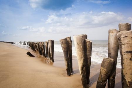 Wooden posts on the beach, Pondicherry, India