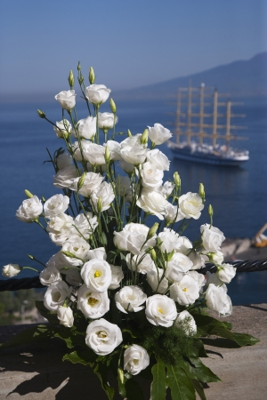 tyrrhenian: Bouquet of white roses with a clipper ship in the background, Sorrento, Tyrrhenian Sea, Campania, Italy Stock Photo