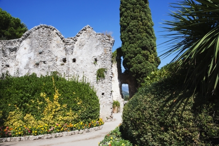 Bäume in einem Garten, Amalfi, in der Provinz Salerno, Kampanien, Italien Standard-Bild - 24664321