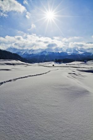 雪覆われた山脈、インド、カシミール ・ ジャンムー ・ カシミール州の風景 写真素材