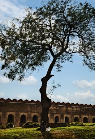 uttar pradesh: Man sitting under a tree at Agra Fort, Agra, Uttar Pradesh, India Editorial