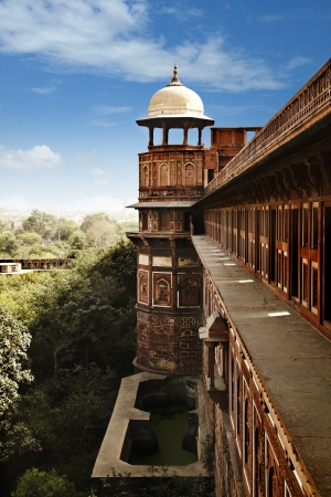 feature: Architectural feature of Agra Fort, Agra, Uttar Pradesh, India