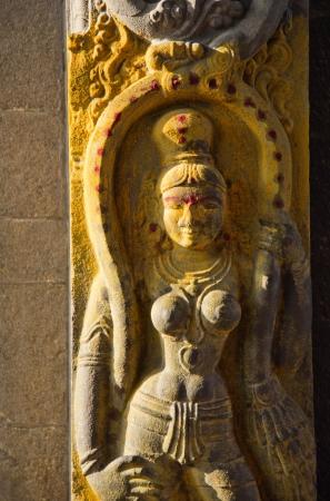 human likeness: Sculpture of Hindu Goddess at Kapaleeshwarar Temple, Mylapore, Chennai, Tamil Nadu, India